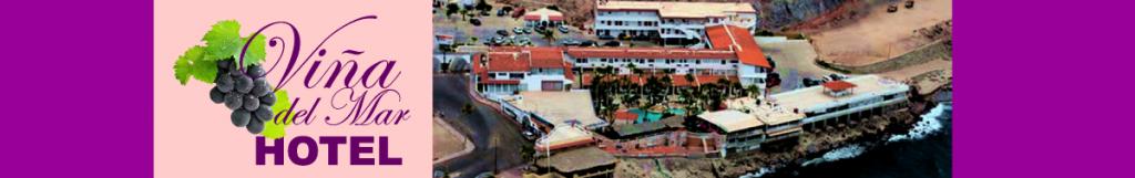 Viña-del-Mar-Banner-2-1024x161